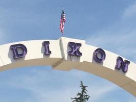 DixonStrong Survey
