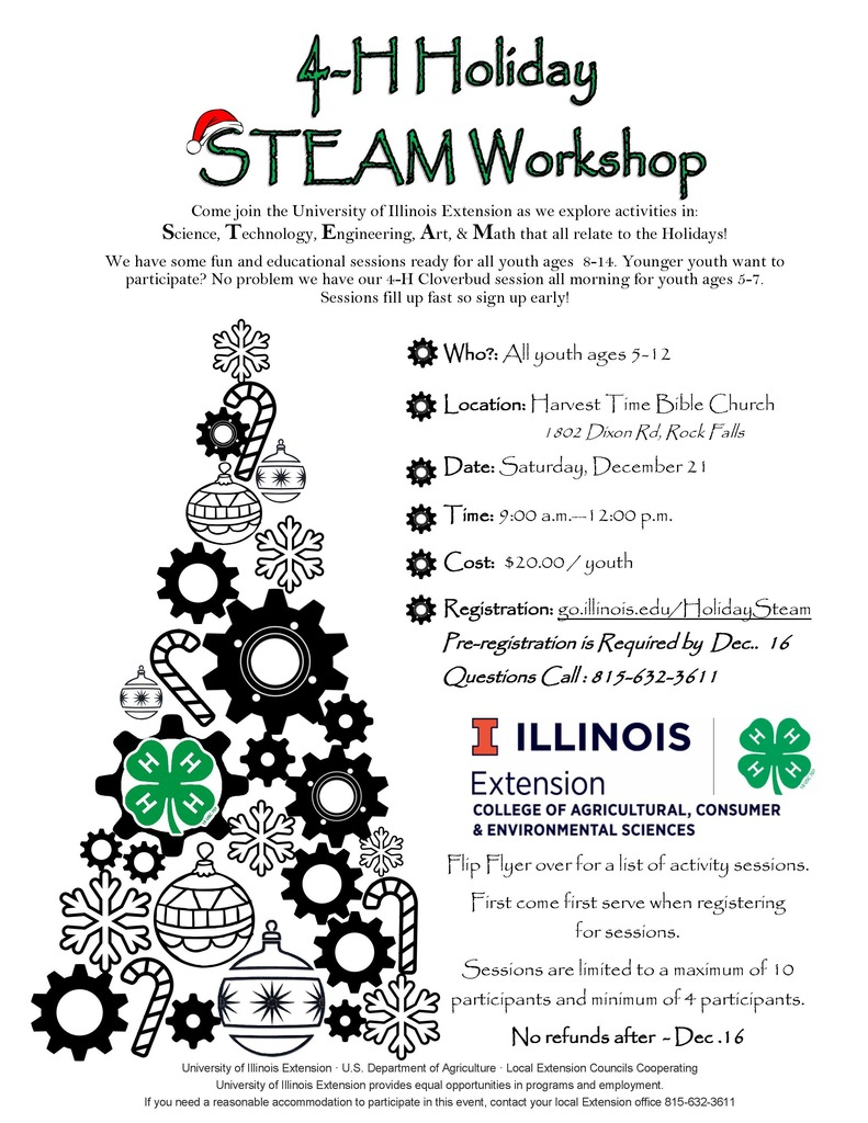 4-H Workshop Flyer Page 1